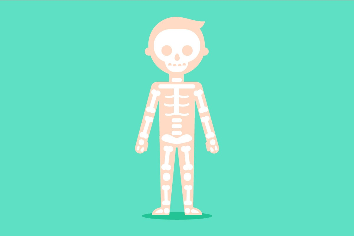 Koľko kĺbov sa nachádza v ľudskom tele?